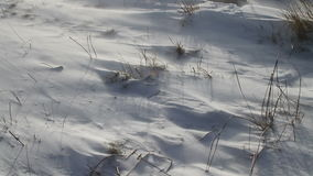 Wind blowing on the snow in the mountains in Abruzzo. stock footage