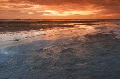 Camargue red sunrise Royalty Free Stock Photos