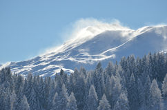 Wind blown mountain. In winter royalty free stock photo