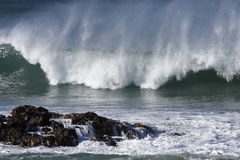 Wind blown wave Stock Images