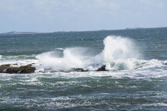 Wind blown. Waves crashing into rocks during high tide in new England Royalty Free Stock Photos