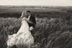 Wind blows across the high grass while a wedding couple stands i Royalty Free Stock Photos