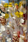 Wind chime. Hanging wind chime made from fishing line and shells Stock Image