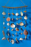 A wind chime with shells Stock Images