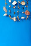 A wind chime with shells Stock Photography