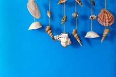 A wind chime with shells Royalty Free Stock Photos
