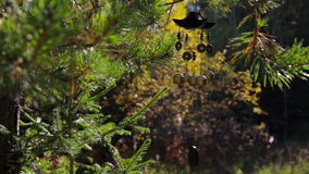 Wind chimes in autumn garden. Happiness, success, power, wealth stock video
