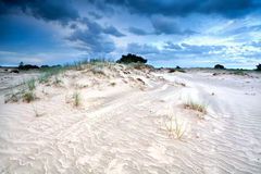 Wind and clouds over sand dune Royalty Free Stock Photography