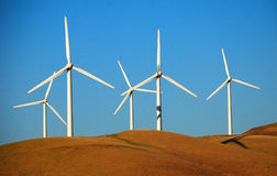 Wind die Landbouwbedrijf in Californië produceert Stock Afbeeldingen