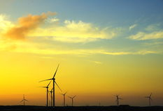 Wind-driven generator. Group under the setting sun royalty free stock photography