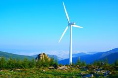 Wind driven generators and cows. Lots of wind driven generators on the top of mountain with blue sky, Iceberg beam in Hebei Province , China stock image