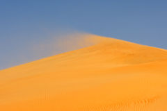 Wind on Dune Stock Photos