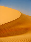 Wind on Dune Royalty Free Stock Photos