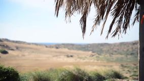 Wind in the dune area on the beach. In Mediterranean sea stock video