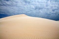 Wind on dunes royalty free stock photos