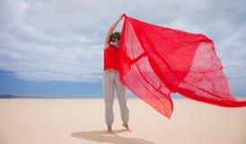 Wind in the dunes Stock Photos