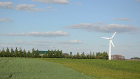 Wind electricity energy stock video footage