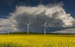 Wind electro-turbines on the rape field, Europe Stock Image