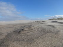 Wind en zand Stock Foto