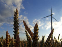 Wind energy. Generator before blue sky and a yellow field Royalty Free Stock Images