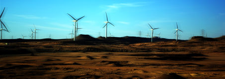 Wind energy. Group of wind energy, Red Sea , Egypt Stock Photo