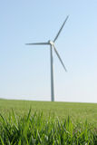 Wind energy. Plant with focussed grass in the foreground Royalty Free Stock Images
