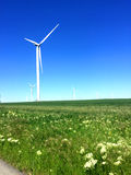 Wind energy. For a clean environment on a sunny day Stock Photography