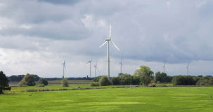 Wind energy mills. Landscape of meadow with wind mills generating energy in the background Royalty Free Stock Images