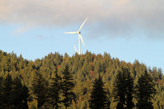 Wind energy mills over forest Stock Photography