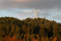 Wind energy mills over forest Royalty Free Stock Photos