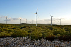 Wind energy park Stock Photography