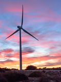 Wind energy park at sunset II Stock Photography
