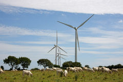 Wind energy plant Stock Images