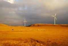 Wind energy plant Royalty Free Stock Image