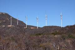 Wind energy plants in the Caatinga of Brazil Royalty Free Stock Photos