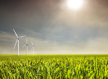 Wind energy. Sustainable, clean energy and agriculture Stock Photos