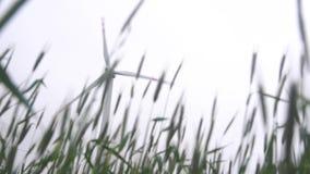 Wind energy turbines stock footage
