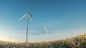 Wind energy turbines landscape among flowers stock video
