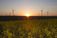 Wind energy turbines on sunset sky background, Energy generator nature friendly. Yellow colza field. Wind energy turbines field with blue sky, Renewable royalty free stock image