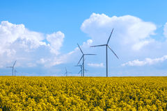 Wind energy turbines on yellow rape field Royalty Free Stock Photography