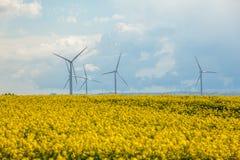 Wind energy turbines on yellow field Royalty Free Stock Photos