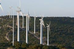 Wind energy. Windmills for renewable electric energy production, Zaragoza Province, Aragon, Spain Stock Photo