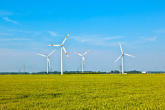 Wind energy wowers standing. In the field in spring royalty free stock images