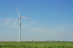 wind för 12 lantgård Arkivfoton