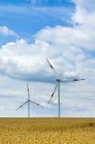 wind för 2 lantgård arkivbild
