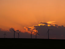 Wind farm. At sunset Royalty Free Stock Image