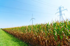 Wind Farm. Wind turbines on a farm in blue skies Stock Images