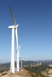 Wind farm. Large wind farm in the countryside Royalty Free Stock Photo