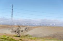Wind farm. Golden Hill wind farm in Livermore , California in the United States of America Stock Image