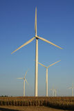 Wind Farm. In Central Illinois Royalty Free Stock Photo